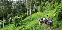 Papua New Guinea Guided Hiking Tours